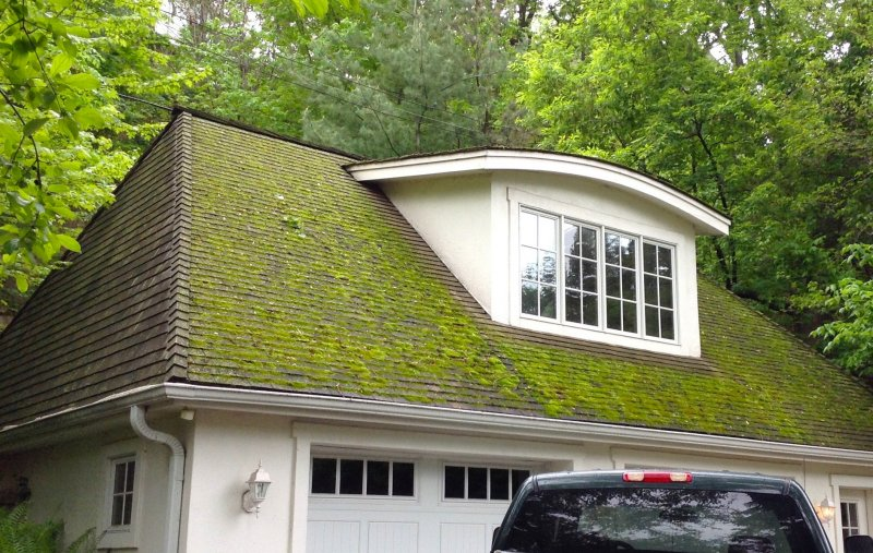 Kuhl Roofing Minneapolis before Washing 2
