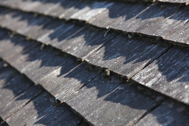 Dirty moldy wood roof in minnetonka cleaning service 2