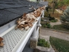 Leaf Relief Gutter Debris Management System