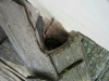 Hole in Roof from Animals and Squirrels (Edina, MN)