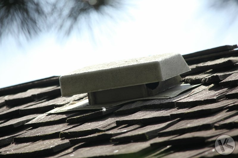Squirrels Doing Damage to Cedar Roof in Golden Valley, MN