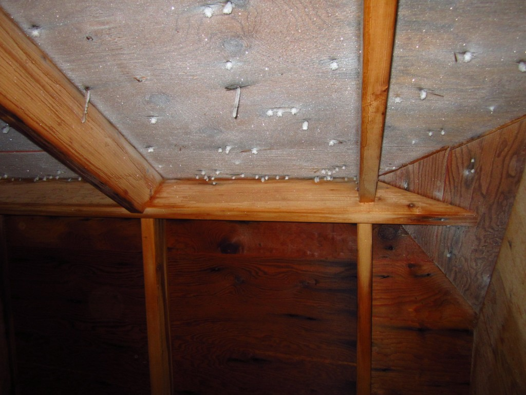 Frost Damage Attic Issues