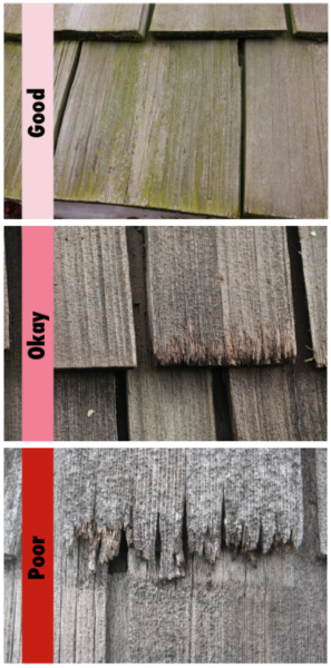 Should you wash your cedar roof