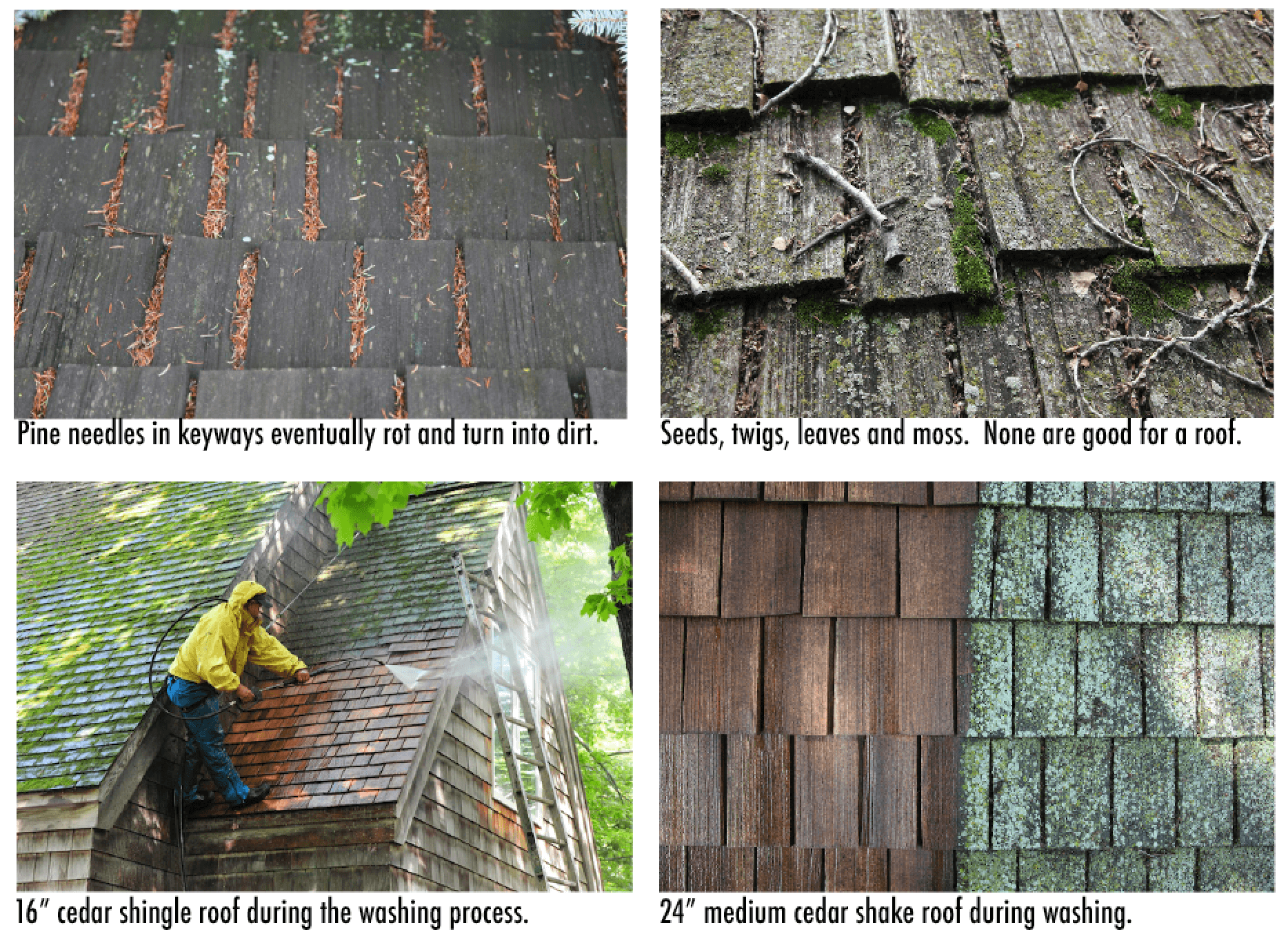Cedar Roof Cleaning » Removing Moss And Lichen From Minneapolis Cedar Roofs